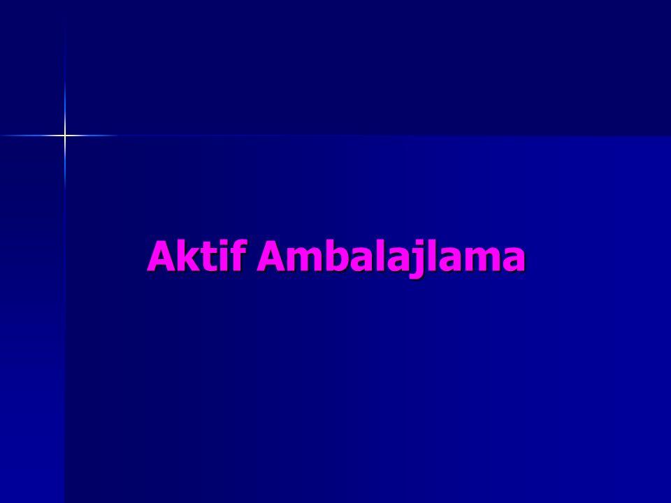 Aktif Ambalajlama