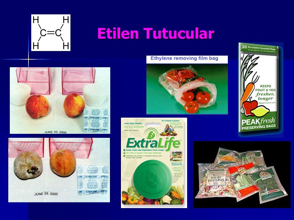 Etilen Tutucular