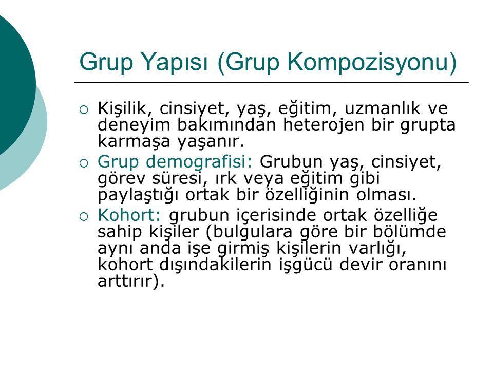 Grup Yapısı (Grup Kompozisyonu)  Kişilik, cinsiyet, yaş, eğitim, uzmanlık ve deneyim bakımından heterojen bir grupta karmaşa yaşanır.  Grup demograf