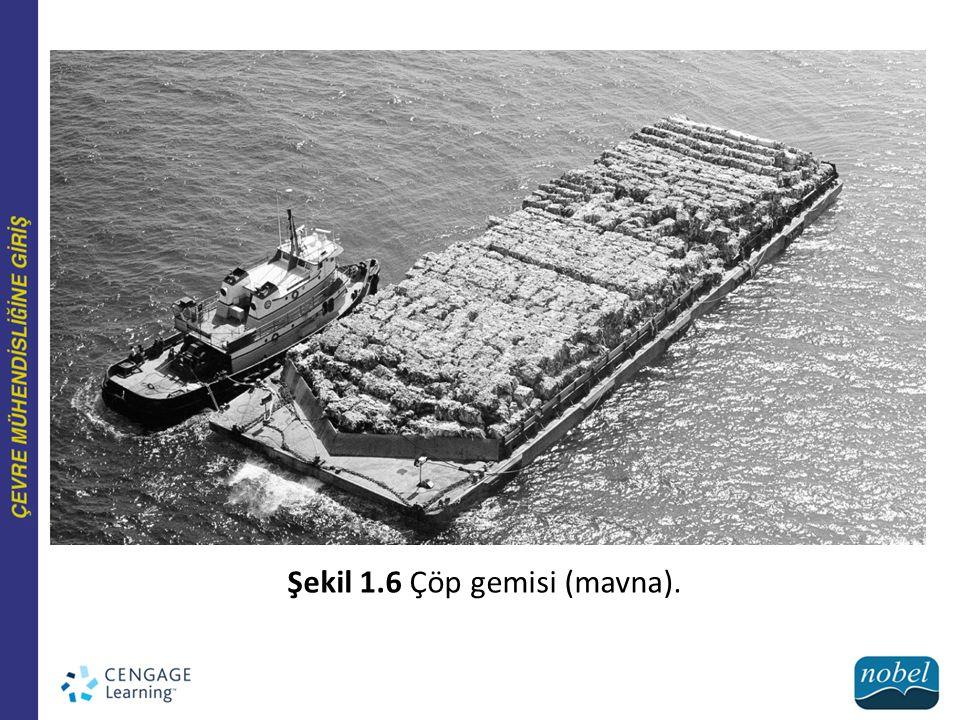 Tartışma Sorusu (?) Çöp gemisinin sahibi Harrelson, çöpleri satın alma konusunda iyi niyetli idi.