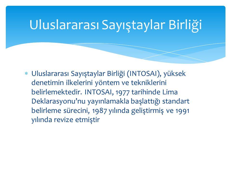  Uluslararası Sayıştaylar Birliği (INTOSAI), yüksek denetimin ilkelerini yöntem ve tekniklerini belirlemektedir.