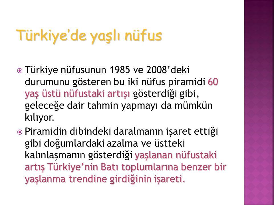 60 yaş üstü nüfustaki artışı  Türkiye nüfusunun 1985 ve 2008'deki durumunu gösteren bu iki nüfus piramidi 60 yaş üstü nüfustaki artışı gösterdiği gib