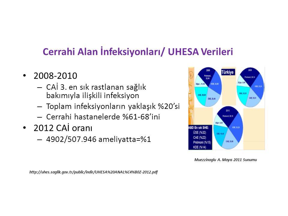 Cerrahi Alan İnfeksiyonları/ UHESA Verileri 2008-2010 – CAİ 3.