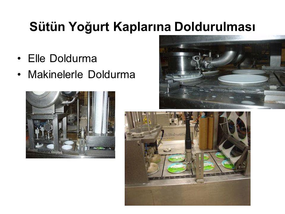 Sütün Yoğurt Kaplarına Doldurulması Elle Doldurma Makinelerle Doldurma
