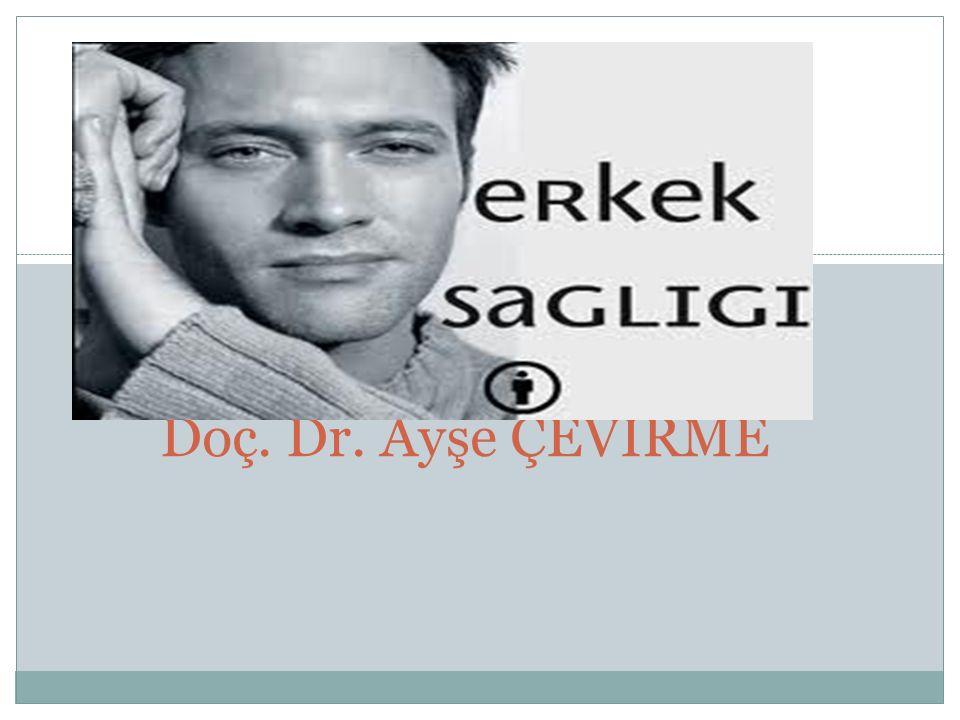1 Doç. Dr. Ayşe ÇEVİRME