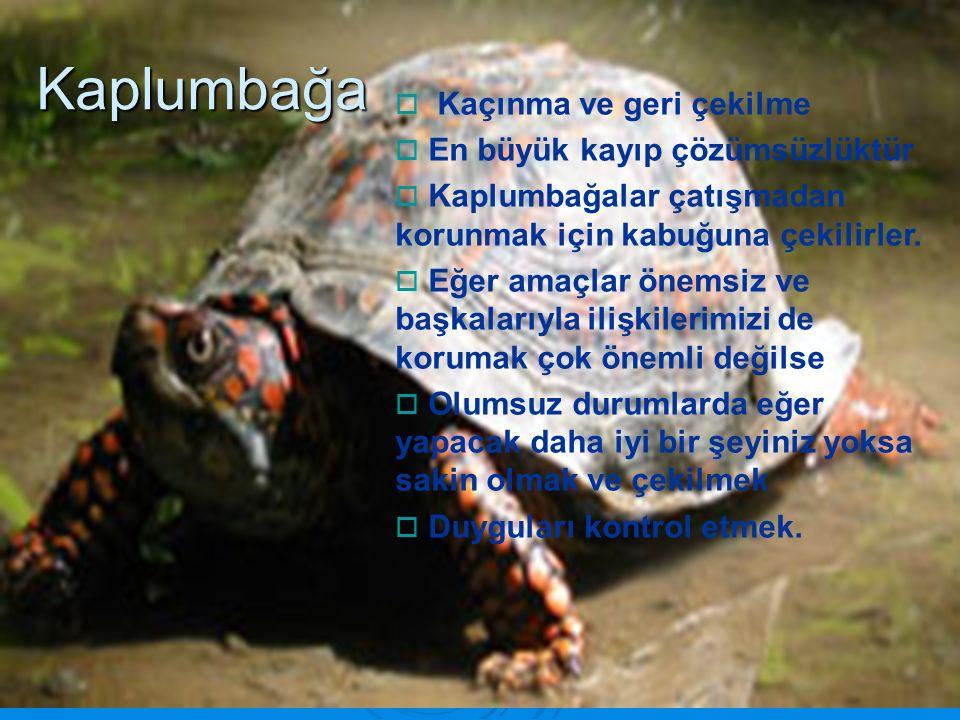  Kaçınma ve geri çekilme  En büyük kayıp çözümsüzlüktür  Kaplumbağalar çatışmadan korunmak için kabuğuna çekilirler.