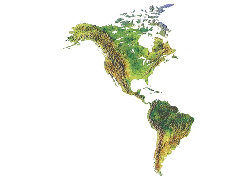 Bitki bakımından Kuzey Amerika çok zengin bir kıtadır.