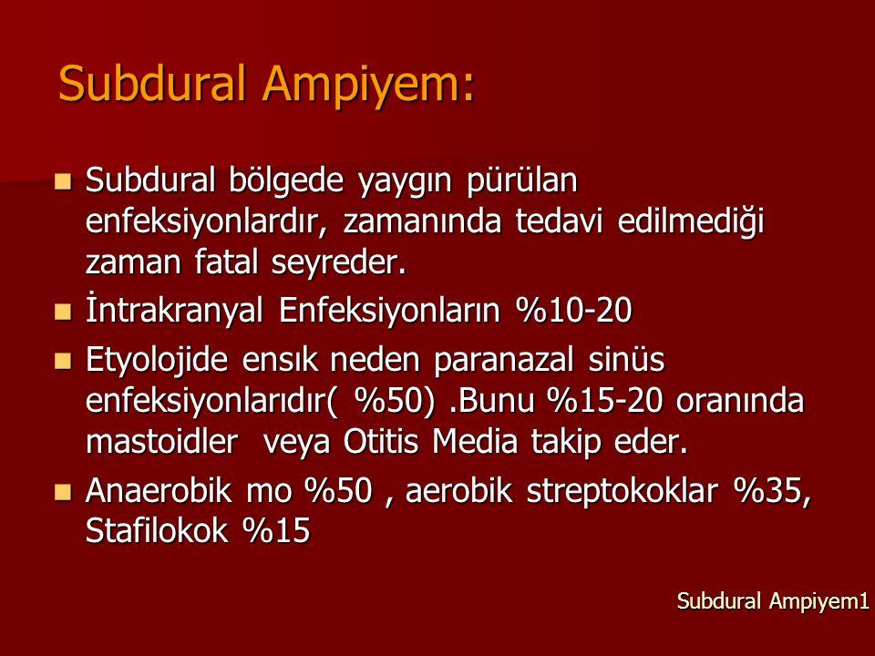 Subdural Ampiyem: Subdural bölgede yaygın pürülan enfeksiyonlardır, zamanında tedavi edilmediği zaman fatal seyreder. Subdural bölgede yaygın pürülan