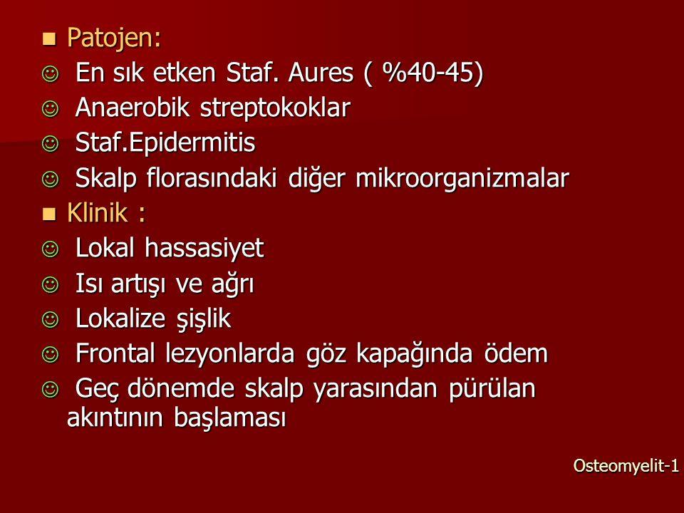 Patojen: Patojen: En sık etken Staf. Aures ( %40-45) En sık etken Staf. Aures ( %40-45) Anaerobik streptokoklar Anaerobik streptokoklar Staf.Epidermit