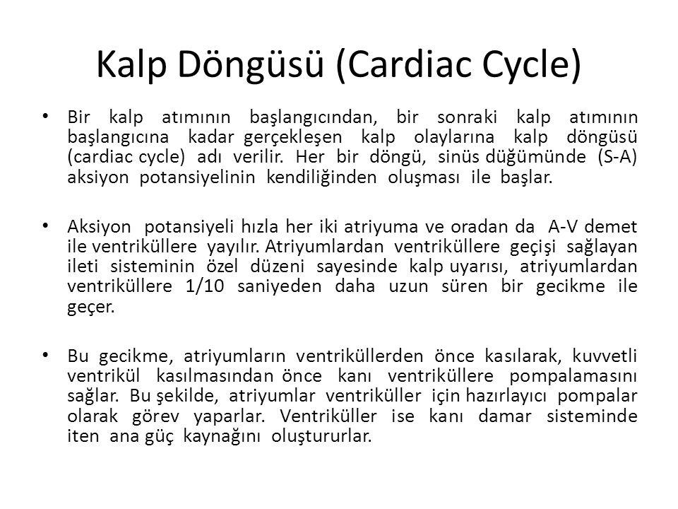 Kalp Döngüsü (Cardiac Cycle) Bir kalp atımının başlangıcından, bir sonraki kalp atımının başlangıcına kadar gerçekleşen kalp olaylarına kalp döngüsü (