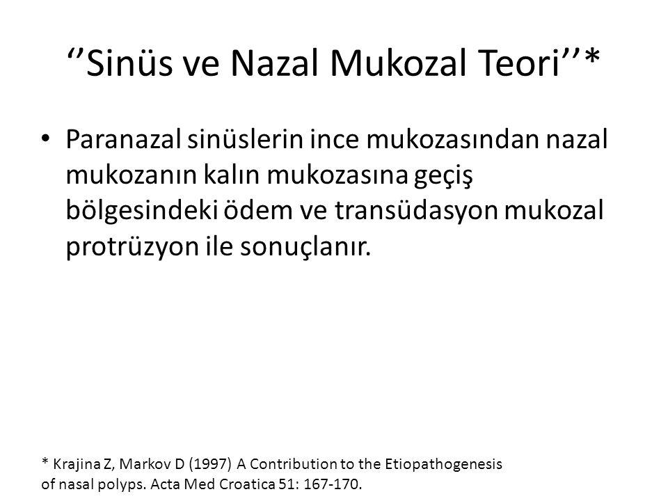 ''Sinüs ve Nazal Mukozal Teori''* Paranazal sinüslerin ince mukozasından nazal mukozanın kalın mukozasına geçiş bölgesindeki ödem ve transüdasyon muko