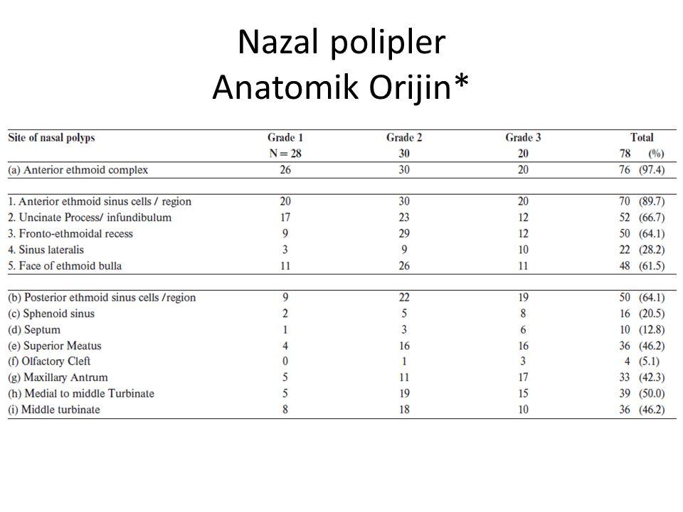 Koanal Polip Tek taraflı izole poliplerin çoğunluğu koanal En sık maksiller sinus Sinus içinde kistik bölümü Ostıumdan veya aksesuar koanaya uzanır Bulla, unsinat, orta konka,septum