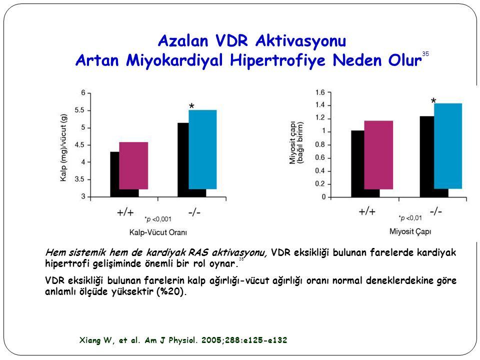 Azalan VDR Aktivasyonu Artan Miyokardiyal Hipertrofiye Neden Olur 35 Hem sistemik hem de kardiyak RAS aktivasyonu, VDR eksikliği bulunan farelerde kar