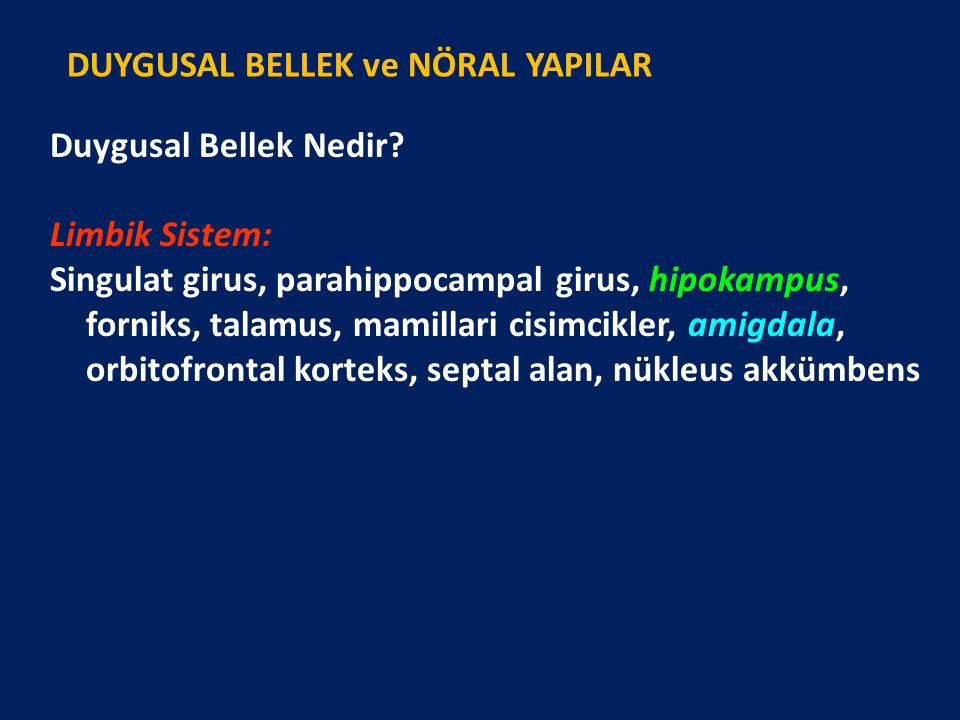 Duygusal Bellek Nedir? Limbik Sistem: Singulat girus, parahippocampal girus, hipokampus, forniks, talamus, mamillari cisimcikler, amigdala, orbitofron