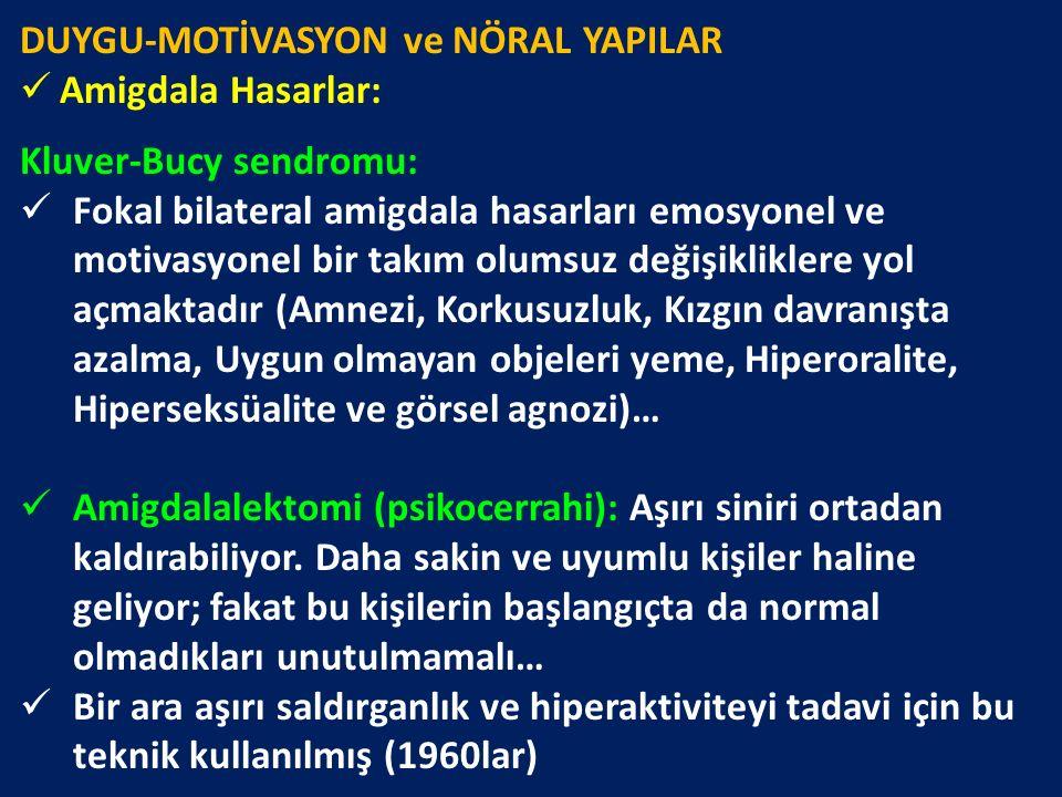DUYGU-MOTİVASYON ve NÖRAL YAPILAR Amigdala Hasarlar: Kluver-Bucy sendromu: Fokal bilateral amigdala hasarları emosyonel ve motivasyonel bir takım olum