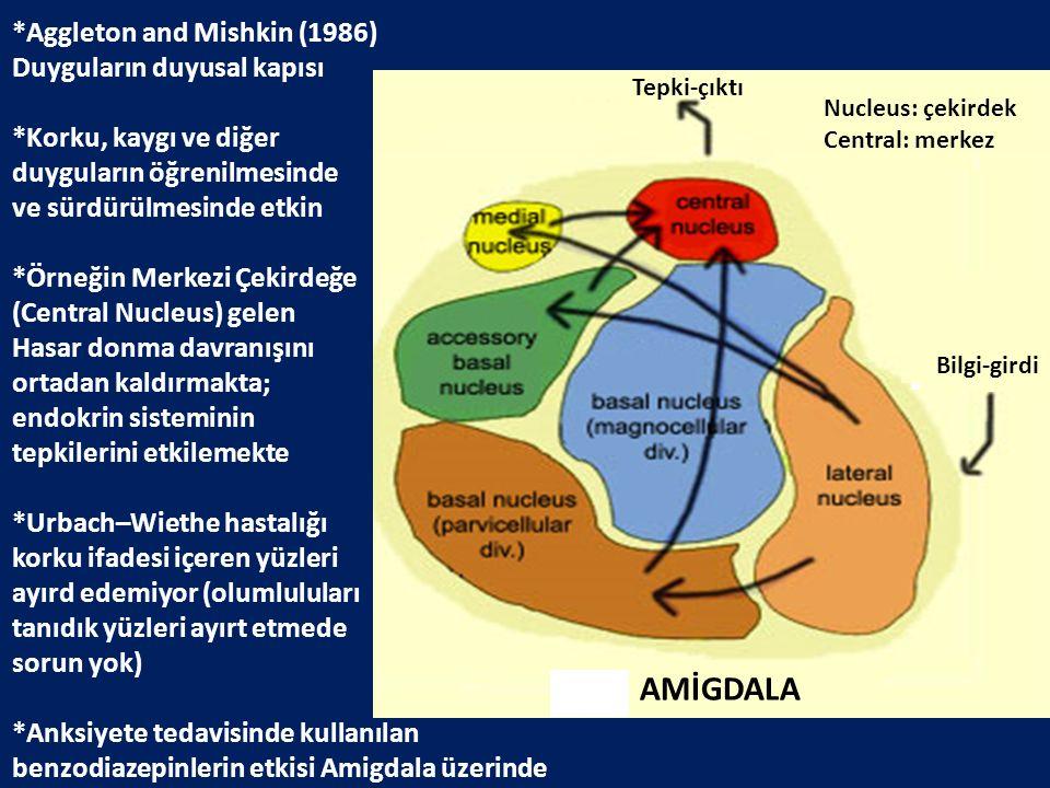 *Aggleton and Mishkin (1986) Duyguların duyusal kapısı *Korku, kaygı ve diğer duyguların öğrenilmesinde ve sürdürülmesinde etkin *Örneğin Merkezi Çeki