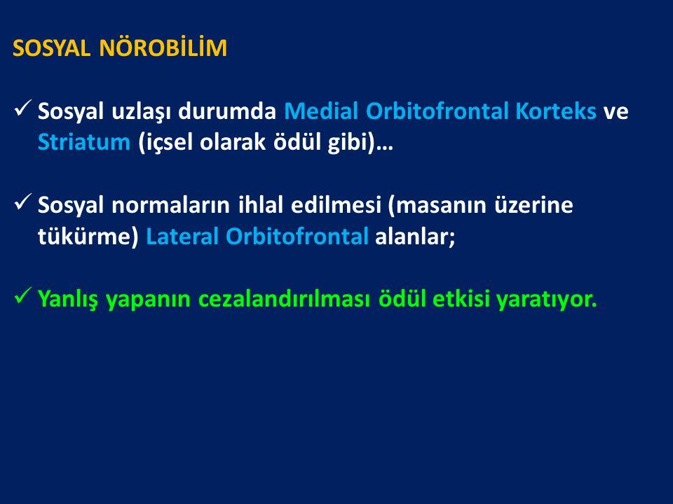 SOSYAL NÖROBİLİM Sosyal uzlaşı durumda Medial Orbitofrontal Korteks ve Striatum (içsel olarak ödül gibi)… Sosyal normaların ihlal edilmesi (masanın üz
