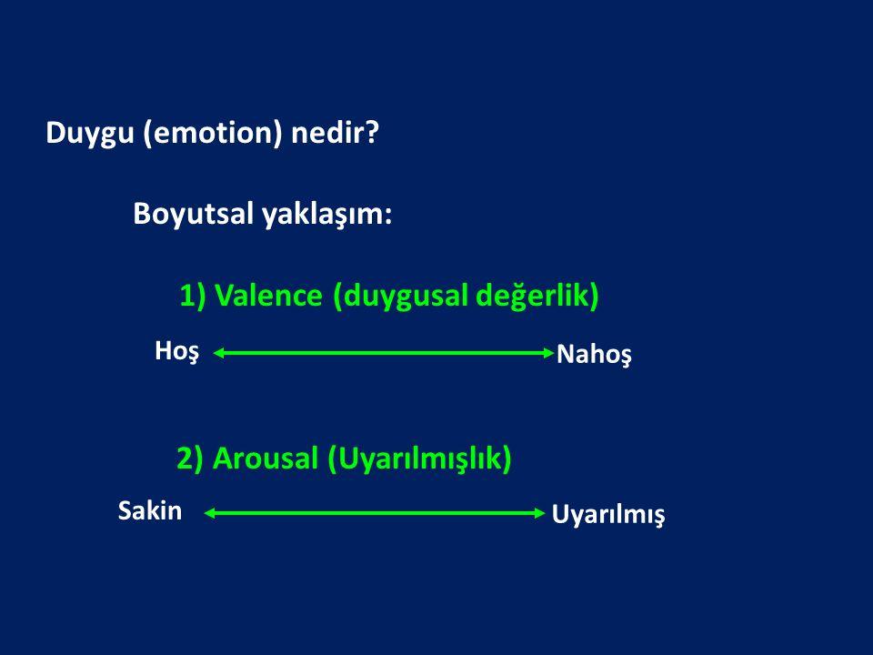 Internatinal Affective Picture System (Lang et al) Valence Arousal