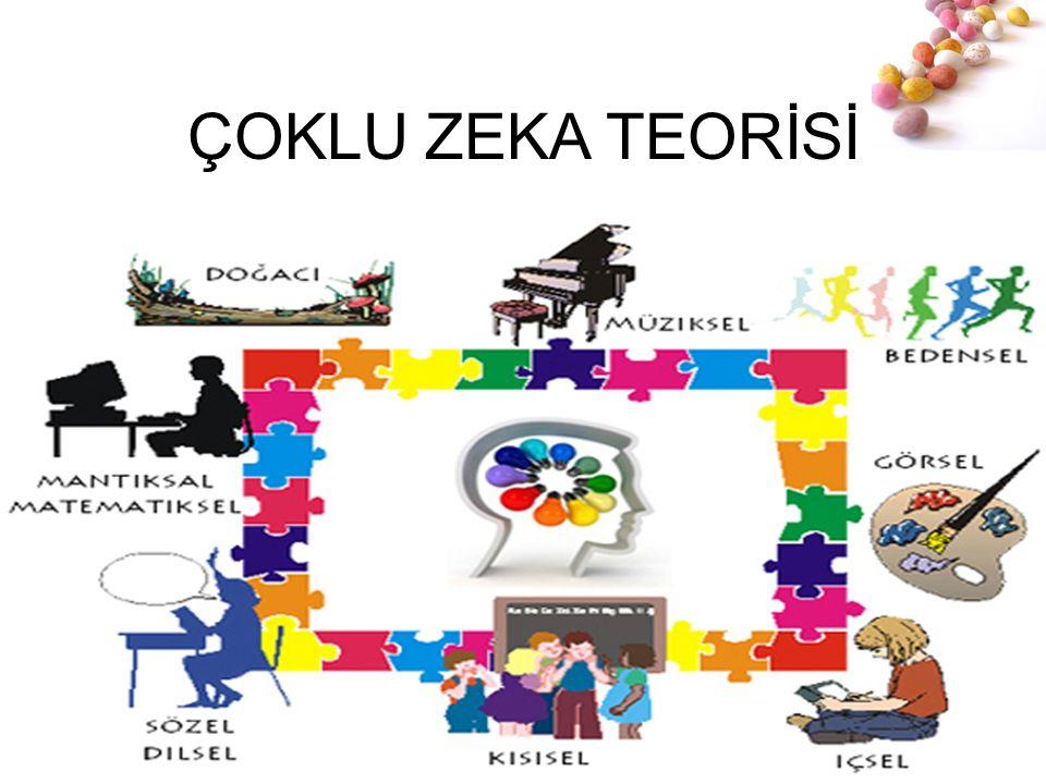 # ÇOKLU ZEKA TEORİSİ