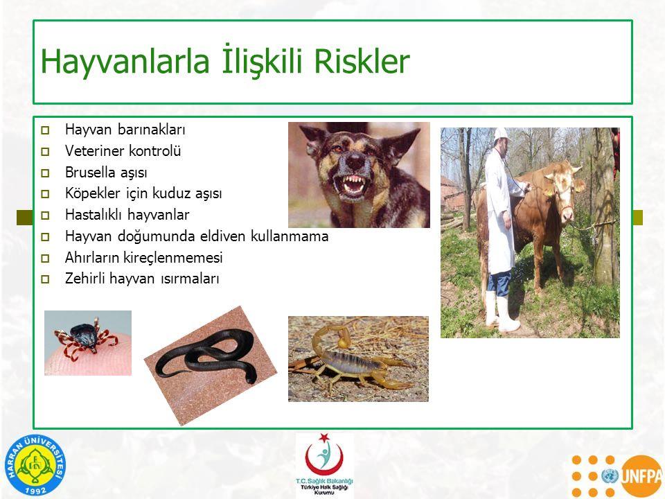 Hayvanlarla İlişkili Riskler  Hayvan barınakları  Veteriner kontrolü  Brusella aşısı  Köpekler için kuduz aşısı  Hastalıklı hayvanlar  Hayvan do