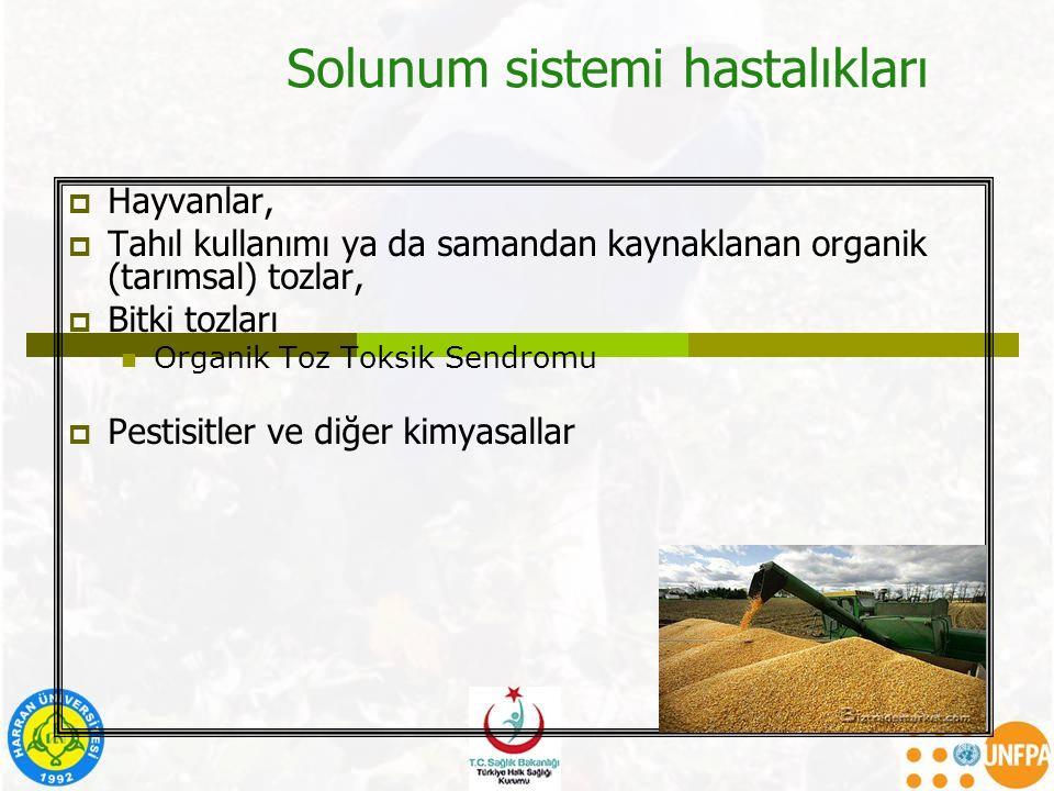 Solunum sistemi hastalıkları  Hayvanlar,  Tahıl kullanımı ya da samandan kaynaklanan organik (tarımsal) tozlar,  Bitki tozları Organik Toz Toksik S