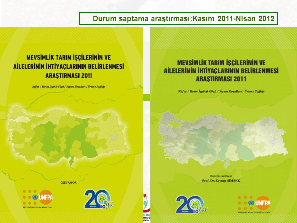 Durum saptama araştırması:Kasım 2011-Nisan 2012
