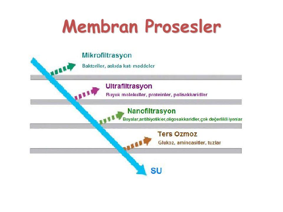 Membran Prosesler