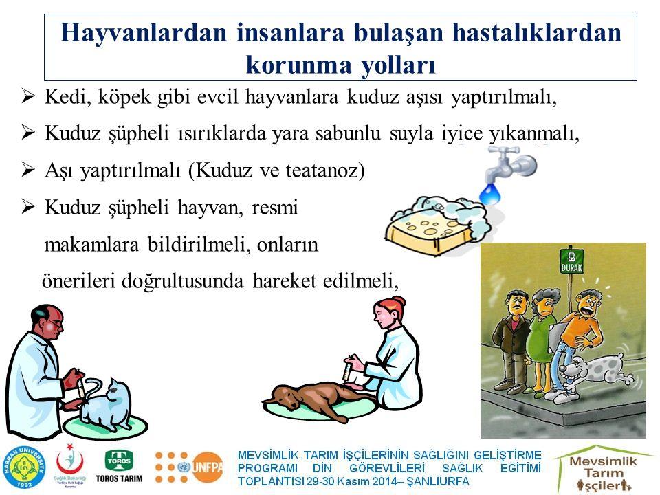 Hayvanlardan insanlara bulaşan hastalıklardan korunma yolları  Kedi, köpek gibi evcil hayvanlara kuduz aşısı yaptırılmalı,  Kuduz şüpheli ısırıklarda yara sabunlu suyla iyice yıkanmalı,  Aşı yaptırılmalı (Kuduz ve teatanoz)  Kuduz şüpheli hayvan, resmi makamlara bildirilmeli, onların önerileri doğrultusunda hareket edilmeli,