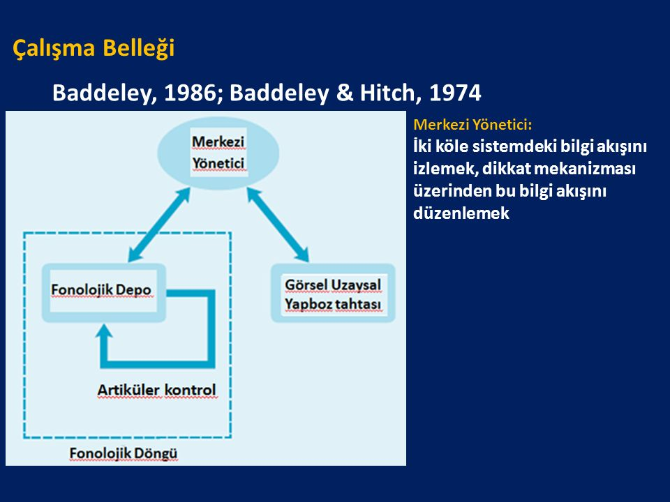 Çalışma Belleği Baddeley, 1986; Baddeley & Hitch, 1974 Merkezi Yönetici: İki köle sistemdeki bilgi akışını izlemek, dikkat mekanizması üzerinden bu bi