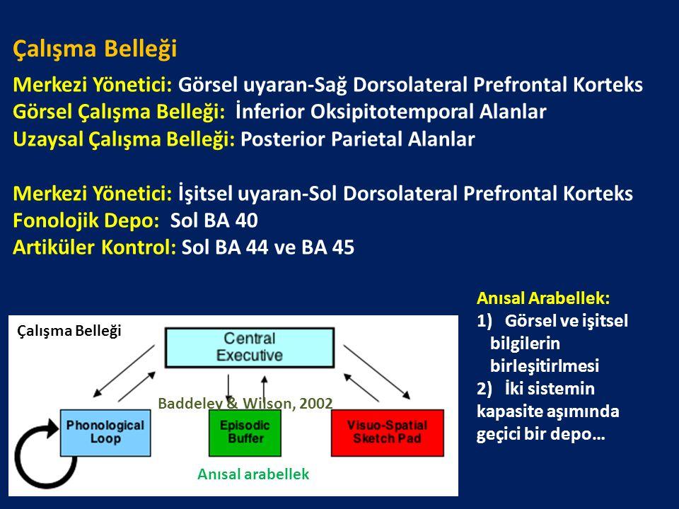 Merkezi Yönetici: Görsel uyaran-Sağ Dorsolateral Prefrontal Korteks Görsel Çalışma Belleği: İnferior Oksipitotemporal Alanlar Uzaysal Çalışma Belleği: