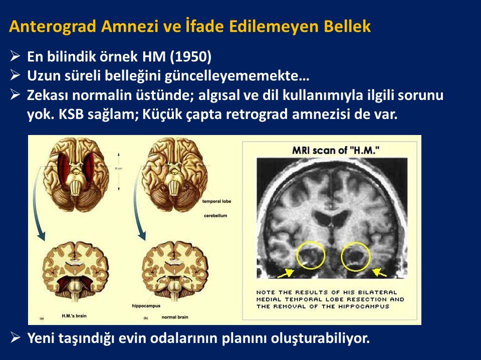 Anterograd Amnezi ve İfade Edilemeyen Bellek  En bilindik örnek HM (1950)  Uzun süreli belleğini güncelleyememekte…  Zekası normalin üstünde; algıs