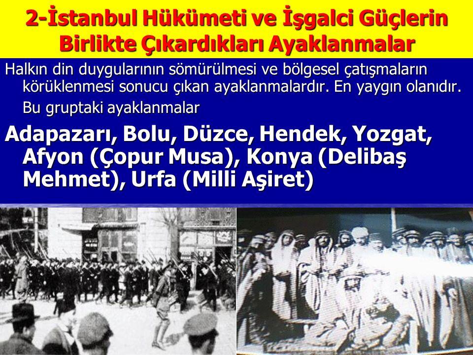 2-İstanbul Hükümeti ve İşgalci Güçlerin Birlikte Çıkardıkları Ayaklanmalar Halkın din duygularının sömürülmesi ve bölgesel çatışmaların körüklenmesi sonucu çıkan ayaklanmalardır.