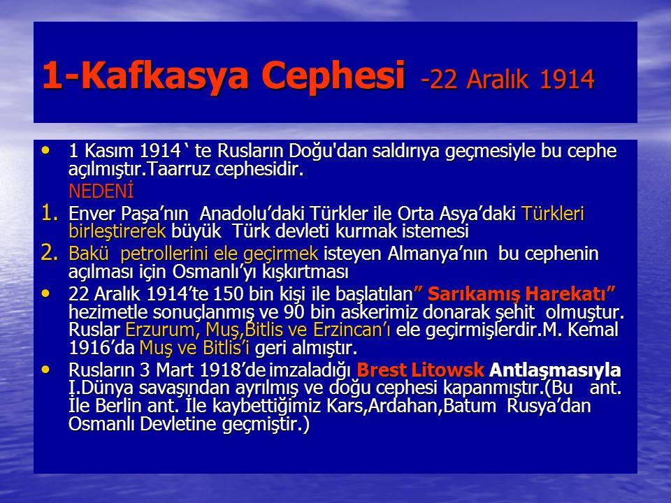 1-Kafkasya Cephesi -22 Aralık 1914 1 Kasım 1914 ' te Rusların Doğu dan saldırıya geçmesiyle bu cephe açılmıştır.Taarruz cephesidir.