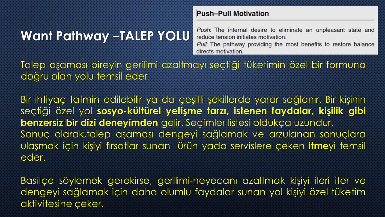 Want Pathway –TALEP YOLU Talep aşaması bireyin gerilimi azaltmayı seçtiği tüketimin özel bir formuna doğru olan yolu temsil eder.