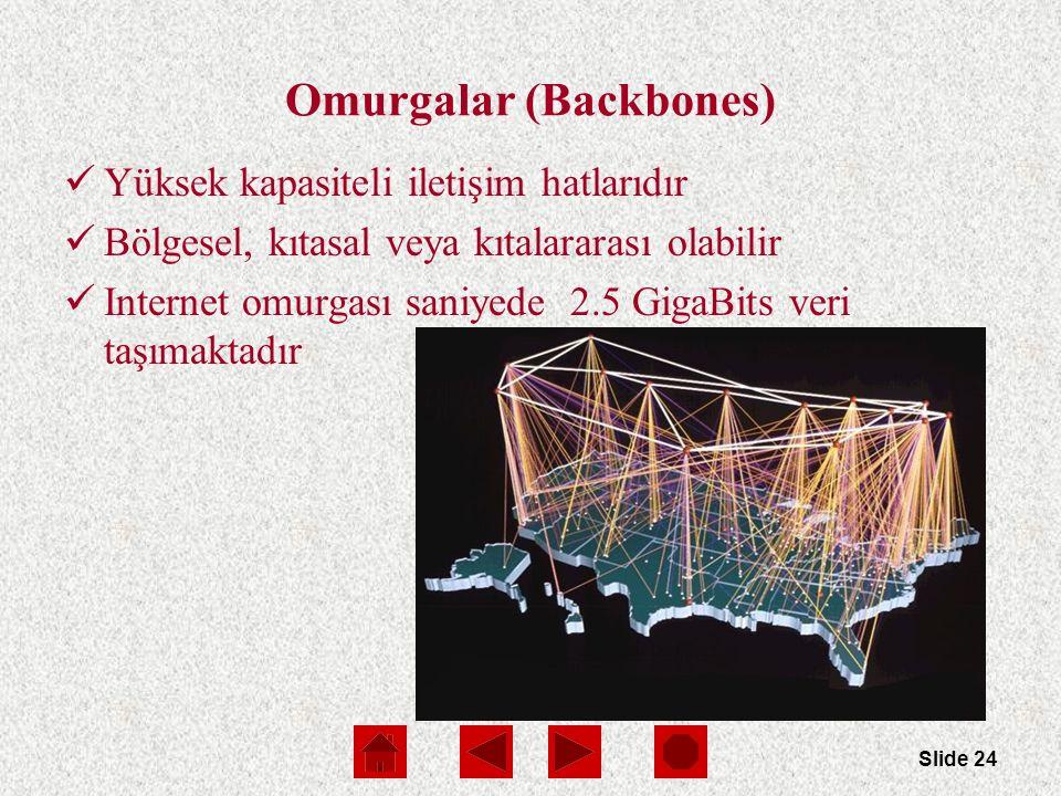 Slide 24 Omurgalar (Backbones) Yüksek kapasiteli iletişim hatlarıdır Bölgesel, kıtasal veya kıtalararası olabilir Internet omurgası saniyede 2.5 GigaBits veri taşımaktadır