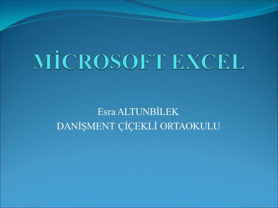 EXCELDE; Excelde 256 adet sütun 65536 adet satır bulunmaktadır.