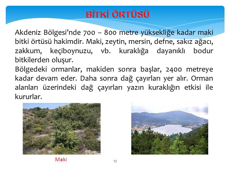 Akdeniz Bölgesi'nde 700 – 800 metre yüksekliğe kadar maki bitki örtüsü hakimdir. Maki, zeytin, mersin, defne, sakız ağacı, zakkum, keçiboynuzu, vb. ku