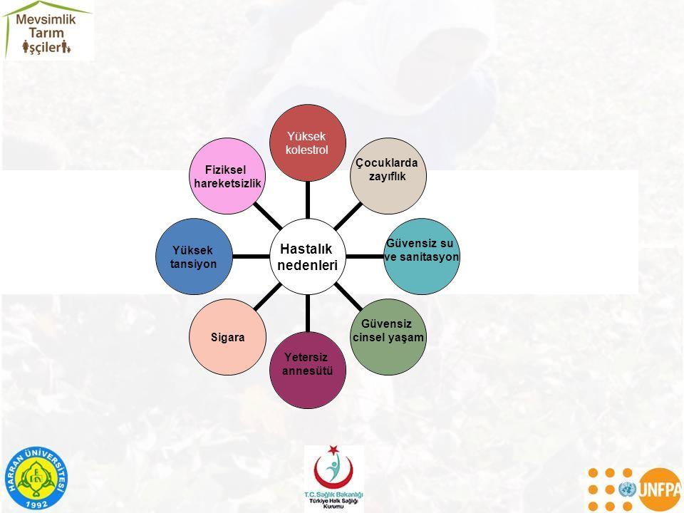 Hastalıkları önleme Risk azaltma (Sektörler arası işbirliği) –Hastalık/sağlık sorunlarına doğrudan neden olan faktörlerin kontrolü Çevresel nedenler Bireysel davranışlar Sağlık hizmetine erişimi sağlama