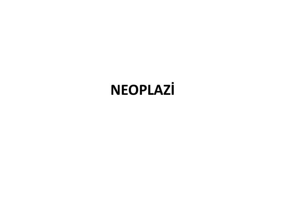 NEOPLAZİ
