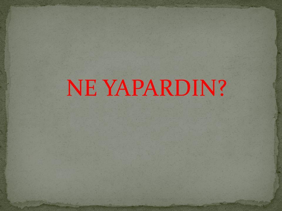 NE YAPARDIN?