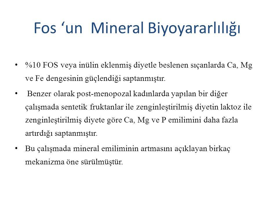 Fos 'un Mineral Biyoyararlılığı %10 FOS veya inülin eklenmiş diyetle beslenen sıçanlarda Ca, Mg ve Fe dengesinin güçlendiği saptanmıştır.