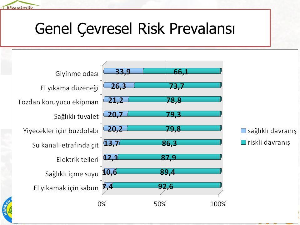 Genel Çevresel Risk Prevalansı