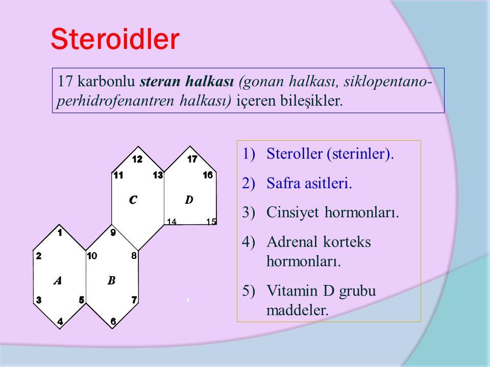 Steroidler 17 karbonlu steran halkası (gonan halkası, siklopentano- perhidrofenantren halkası) içeren bileşikler. 1)Steroller (sterinler). 2)Safra asi