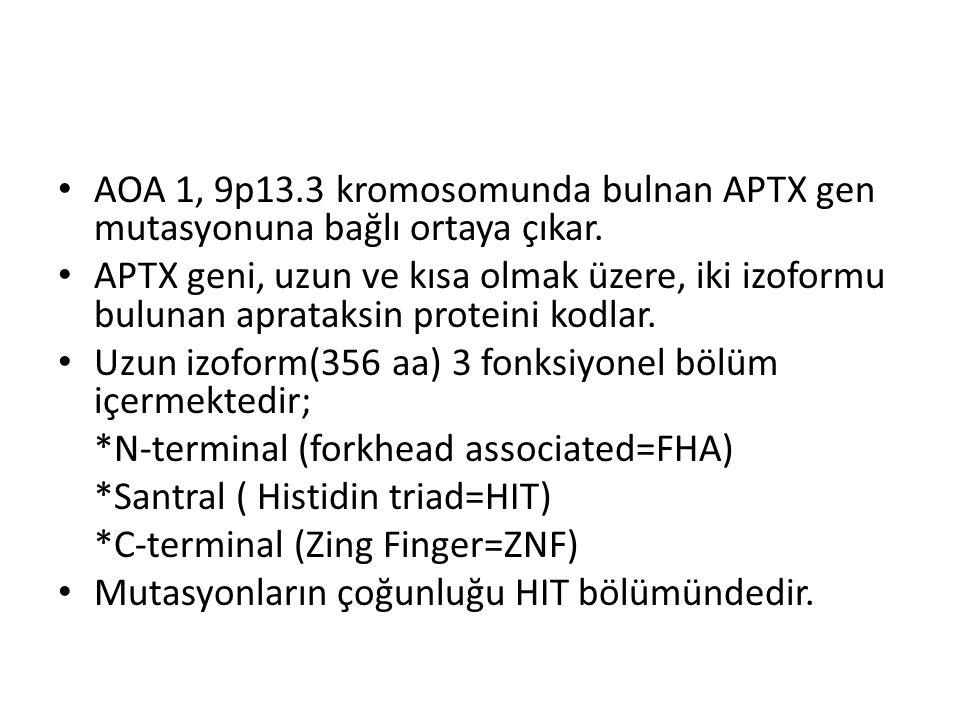 AOA 1, 9p13.3 kromosomunda bulnan APTX gen mutasyonuna bağlı ortaya çıkar. APTX geni, uzun ve kısa olmak üzere, iki izoformu bulunan aprataksin protei