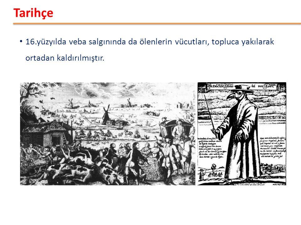 6 16.yüzyılda veba salgınında da ölenlerin vücutları, topluca yakılarak ortadan kaldırılmıştır.