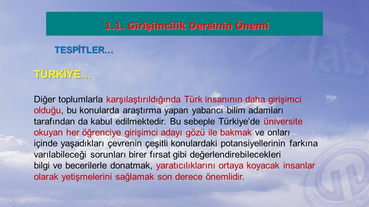 TESPİTLER… TÜRKİYE… Diğer toplumlarla karşılaştırıldığında Türk insanının daha girişimci olduğu, bu konularda araştırma yapan yabancı bilim adamları tarafından da kabul edilmektedir.