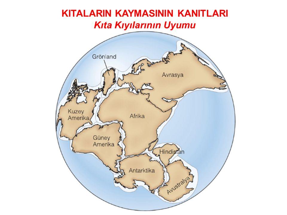 KITALARIN KAYMASININ KANITLARI Kıta Kıyılarının Uyumu