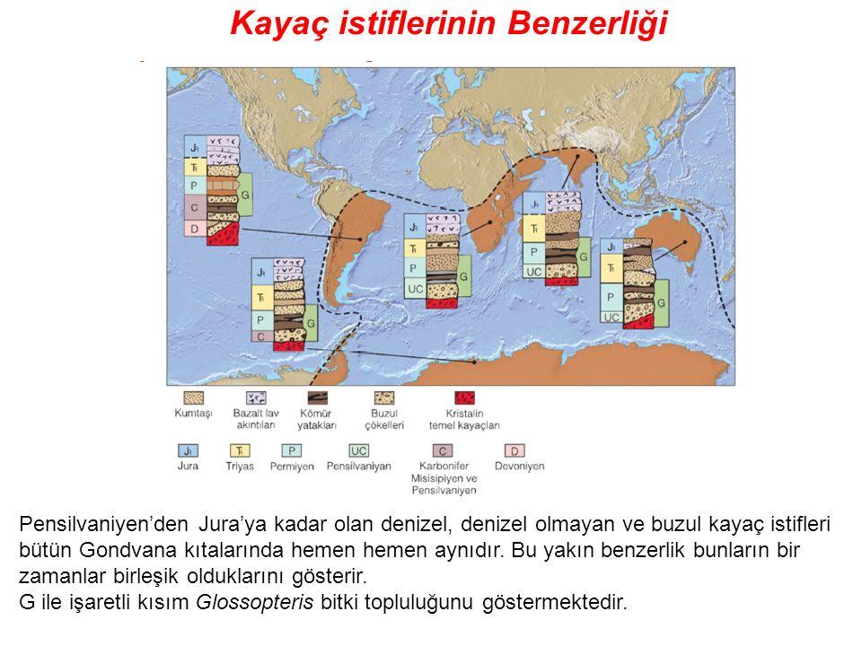 Kayaç istiflerinin Benzerliği Pensilvaniyen'den Jura'ya kadar olan denizel, denizel olmayan ve buzul kayaç istifleri bütün Gondvana kıtalarında hemen