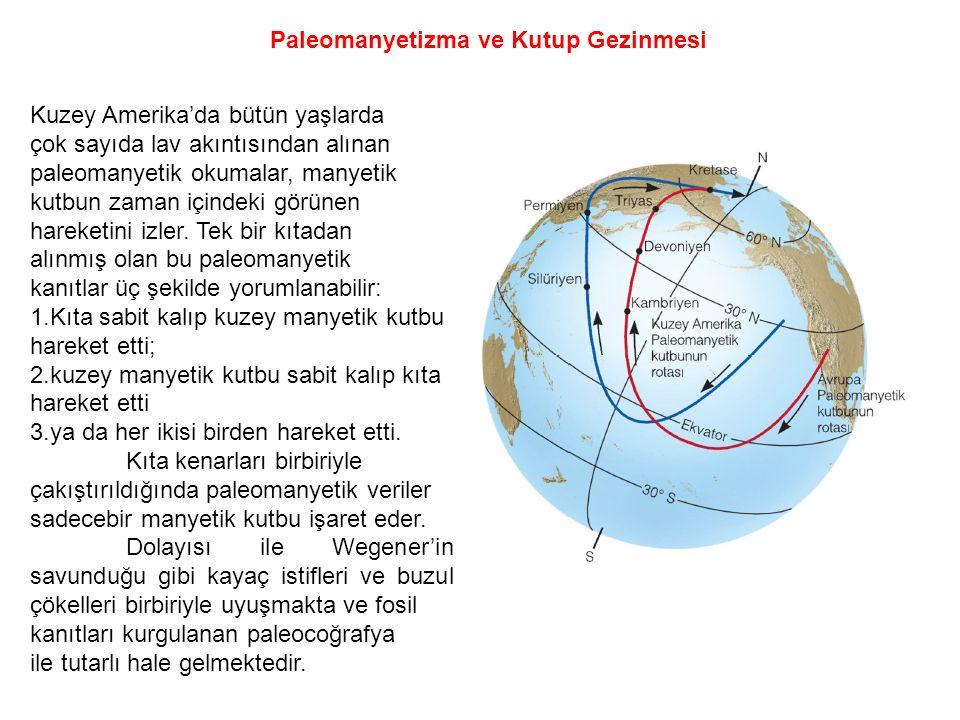 Paleomanyetizma ve Kutup Gezinmesi Kuzey Amerika'da bütün yaşlarda çok sayıda lav akıntısından alınan paleomanyetik okumalar, manyetik kutbun zaman iç