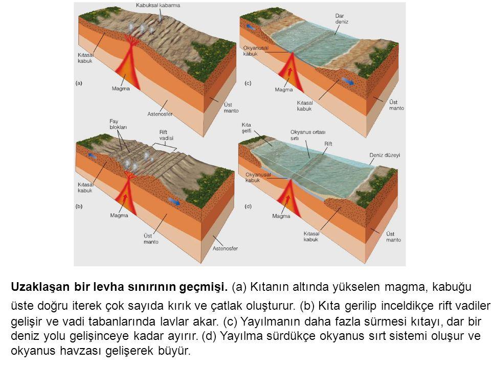 Uzaklaşan bir levha sınırının geçmişi. (a) Kıtanın altında yükselen magma, kabuğu üste doğru iterek çok sayıda kırık ve çatlak oluşturur. (b) Kıta ger
